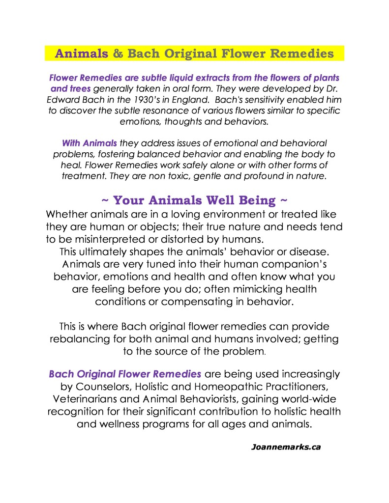Animals and Bach Flower Remedies