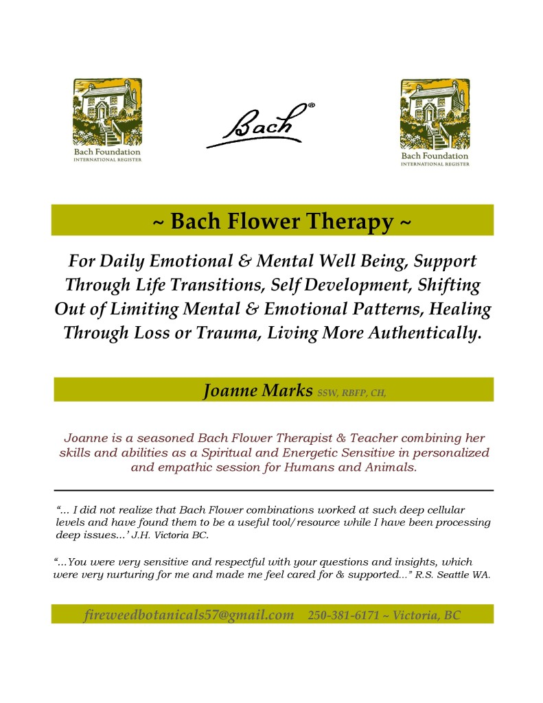 Bach Flower Therapy Sessions - How They Work